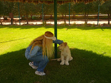 Here I am with Shaggy, the white lion at ADWC
