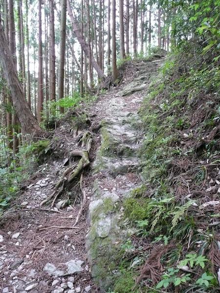 13_ Henro Korogashi