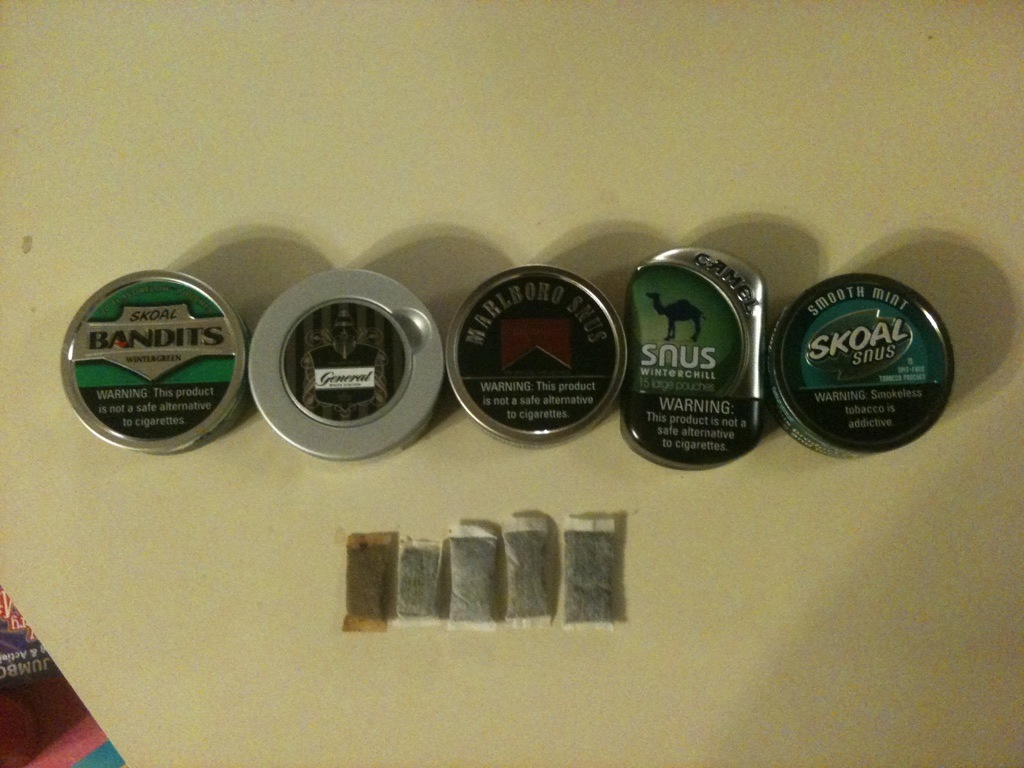 Skoal New Flavors http://chadizzy1.blogspot.com/2011/01/skoal-snus-2011-review-17-january-2011.html