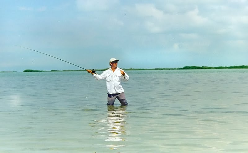 Sport fishing license legislation ambergris caye belize for Big 5 fishing license