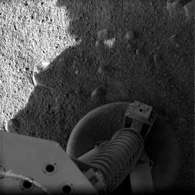 space mars lander 2008 life picture surface north pole marsian