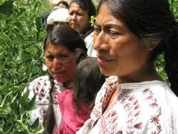 http://4.bp.blogspot.com/_G4Q3TDXpGEI/TD9ZyBteMLI/AAAAAAAAIhw/FbIJqwEdkrQ/s400/mujeres_indigenas_oaxaca.jpg