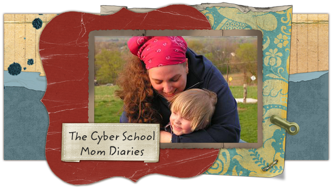 The Cyber School Mom Diaries