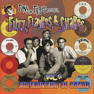 Power Pop Lovers Fuzz Flaykes Amp Shakes Vol 4