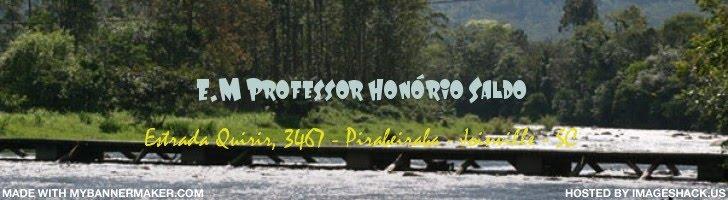 E.M. Professor Honório Saldo