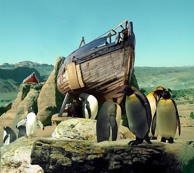 global warming penguins oceans woes sea problems