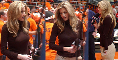 Erin Andrews Peephole Tape Video
