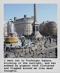 The Pigeons of Trafalgar Square (Amaryllis Night and Day)