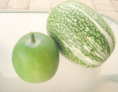 shark fin melon. Winter melon on the left,