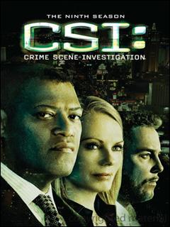 Baixar CSI: Las Vegas 8ª Temporada Download Grátis