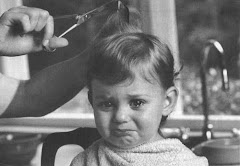 'MOM'S TOO BUSY CUTTING MY HAIR TO FIX YOUR CHILI, DEX!'