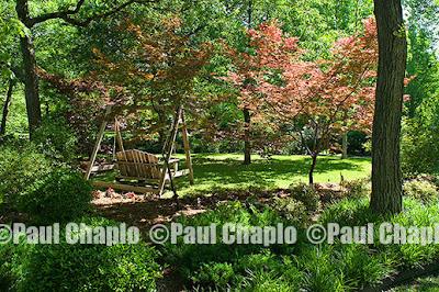 garden landscape architecture 11