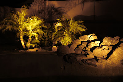 low voltage landscape lighting ideas