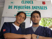 Facultad de Medicina Veterinaria y Zootecnia