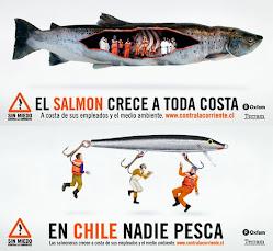 Sin salmoneras y sin represas!