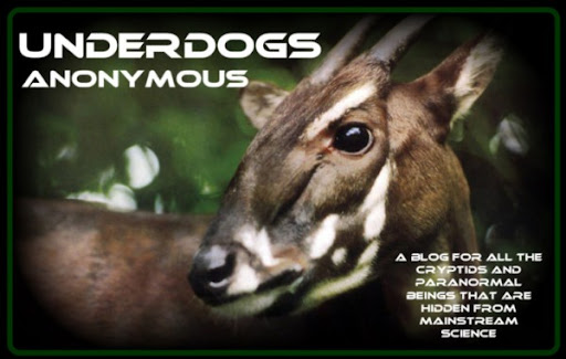 Welcome to Underdogs Anonymous, a Cryptid Blog!