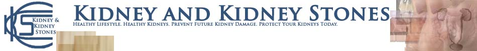 Kidney and Kidney Stones