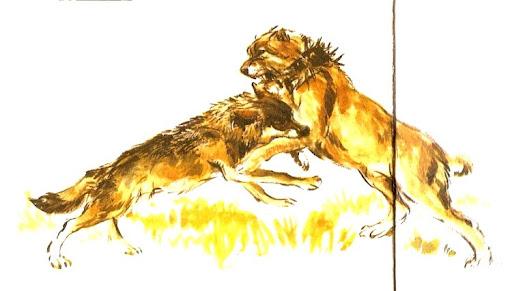 El blog de lagarto(supervivencia,ganaderia,tecnicas primitivas,agricultura y naturaleza)