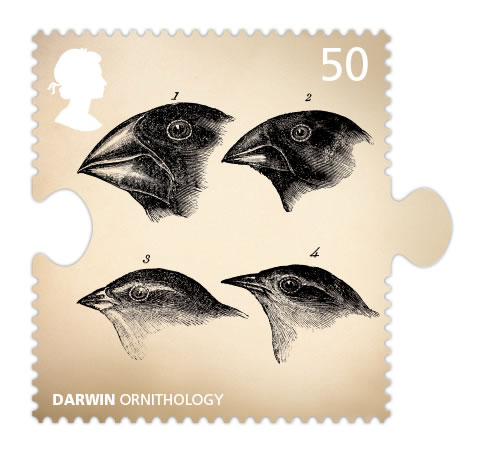 darwin finches stamp