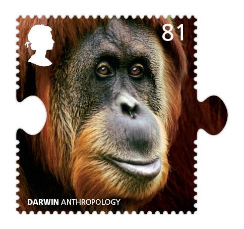 darwin orang-utan stamp