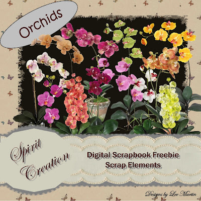 http://spiritcreationblogfreebiepage.blogspot.com/2009/05/download-freebie-orchids.html