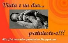 Blog Pro Vita Alba
