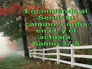 http://4.bp.blogspot.com/_GG0RJNHrQn4/TJlLq545jPI/AAAAAAAABFU/aoDZnewIrVQ/s1600/Salmo+37+5.jpg