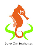 Saving The Seahorse Means Saving The Sea