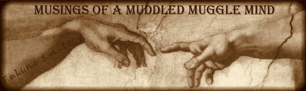 """Musings of a muddled muggle mind"""