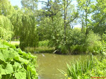 Woking Park
