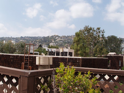 View of the Hollywood Hills from our new condo terrace