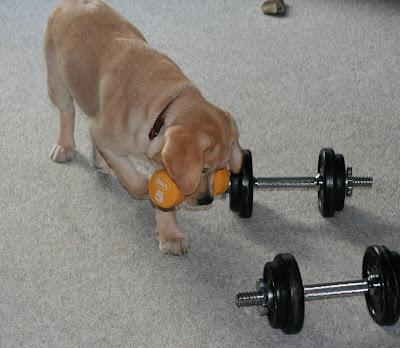 Weight lifting at 13 weeks