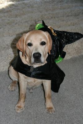 Halloween Cooper askew