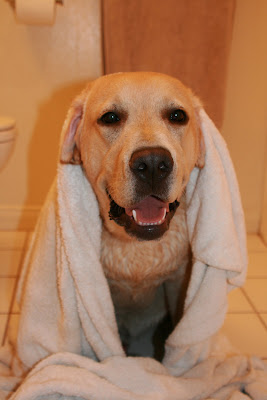 Bath-time Cooper doing his Yoda impression
