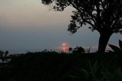Santa Monica Palisades Park sunset