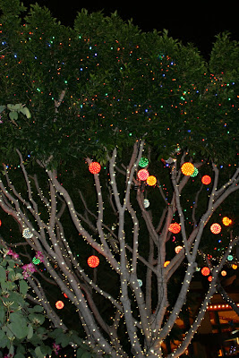 Disneyland California Christmas lights