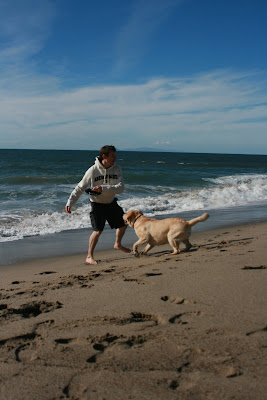 Beach frisbee fun