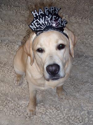 Happy New Year Cooper