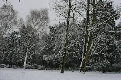 Chiswick in snow Feb 2009