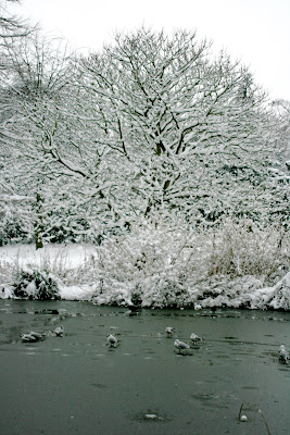 Frozen Chiswick pond
