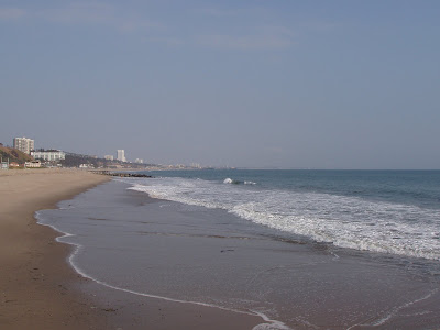 Santa Monica beach