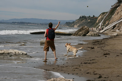 Playing ball at Hendry's Dog Beach
