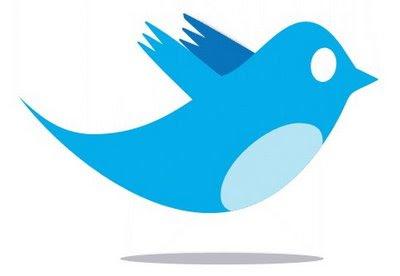 Blue twitter bird image