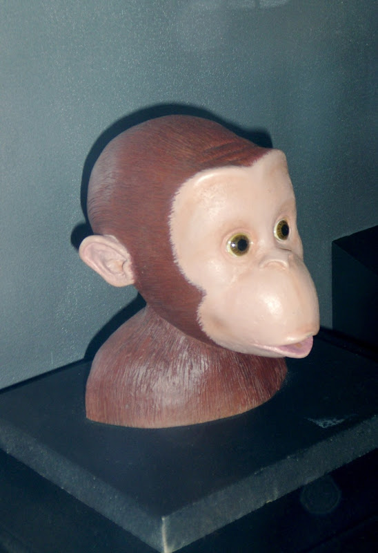 Curious George monkey head model