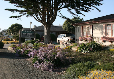 Sea Otter Inn Cambria