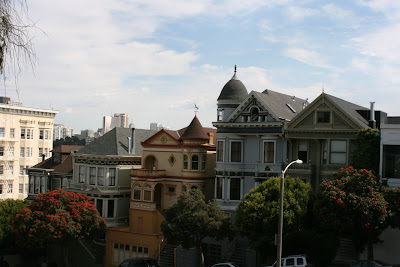 Pretty Alamo Square houses