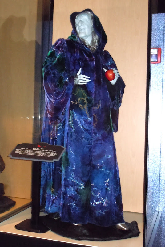 Enchanted Narissa Hag costume