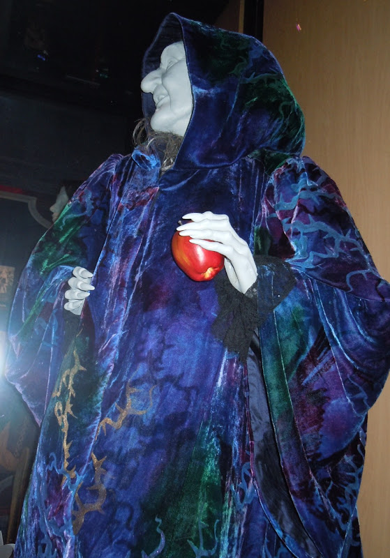 Narissa Hag movie costume from Enchanted