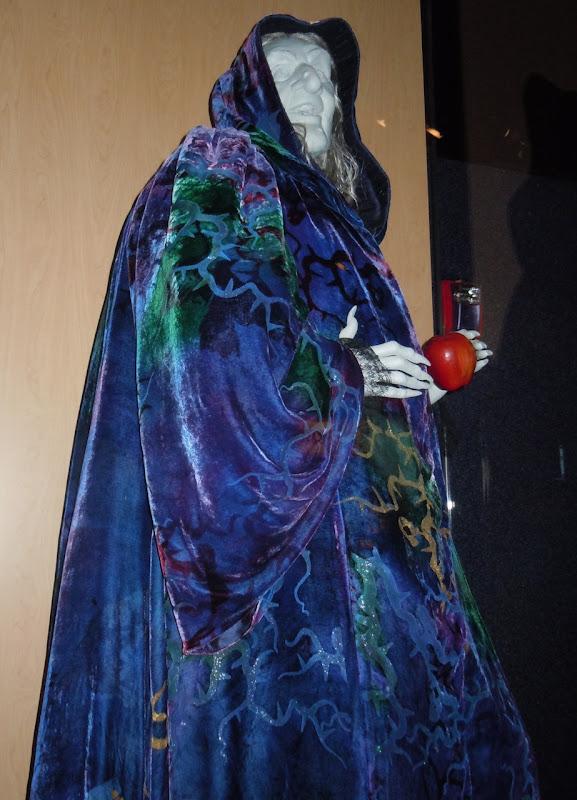 Narissa Hag Enchanted costume