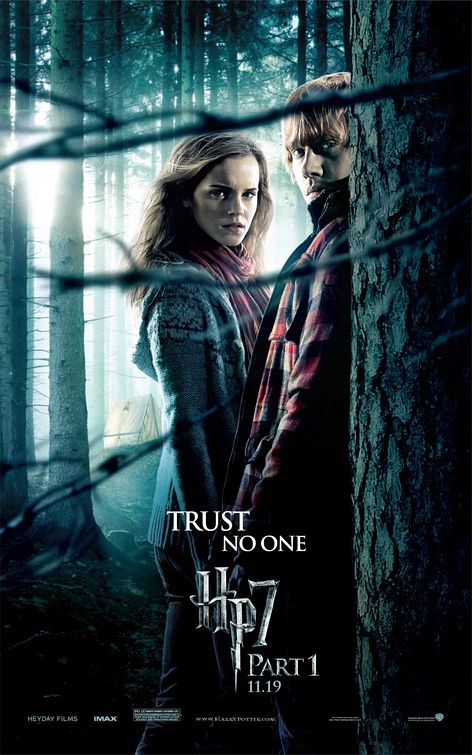 Hermione and Ron Harry Potter 7 poster